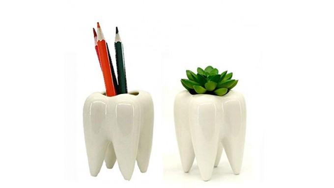 Macetero en forma de diente.